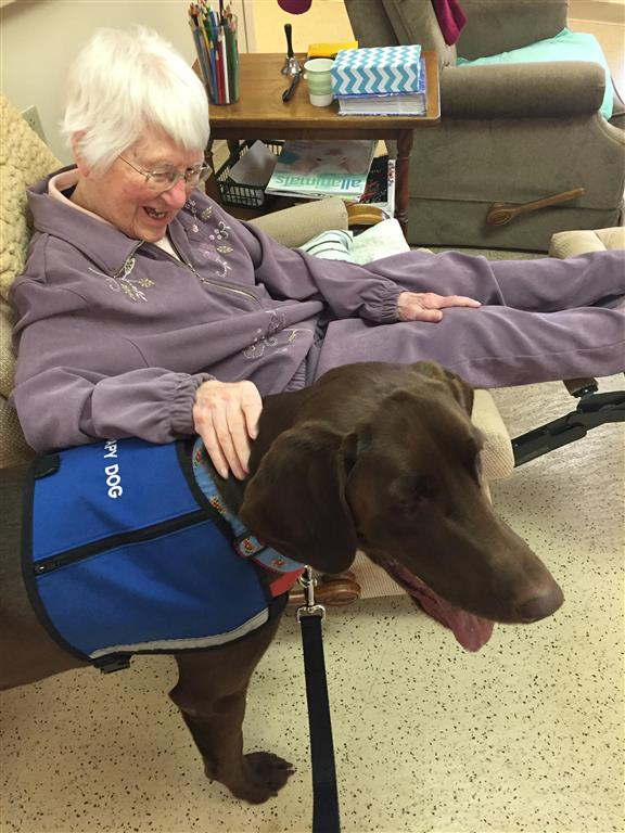 """Therapy Dog """"Archie"""""""
