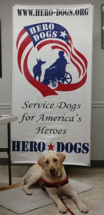 Hero Dogs Lady Liberty