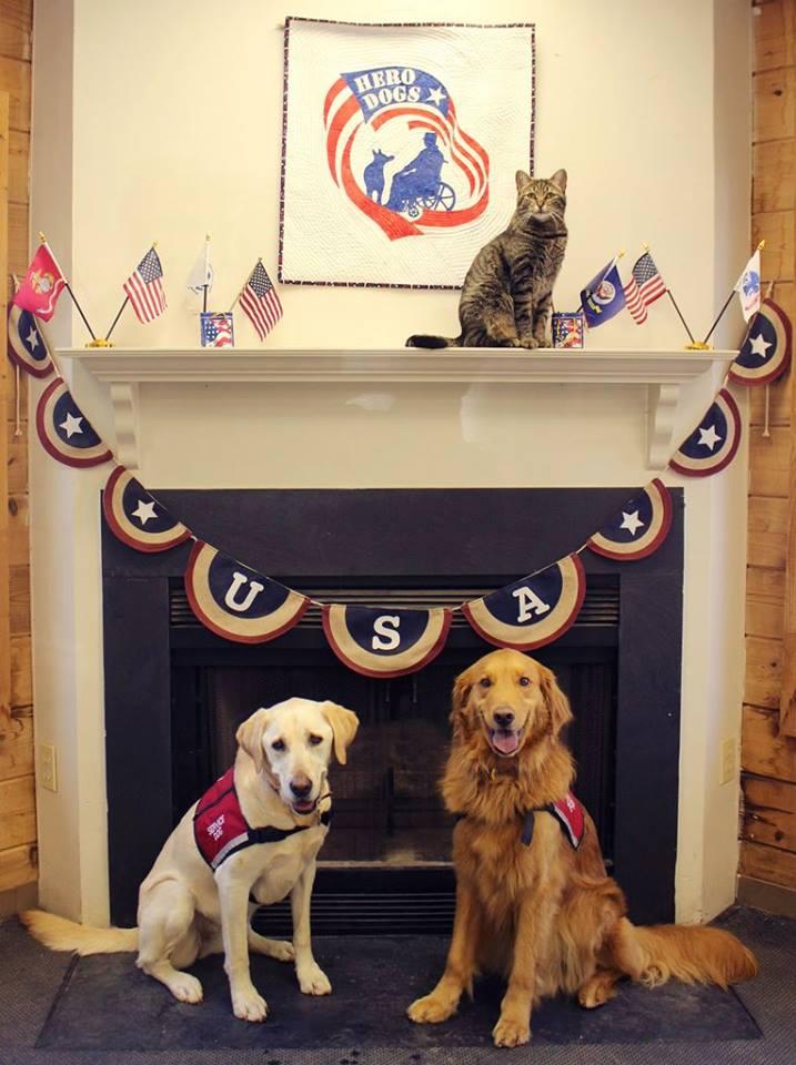 Hero Dogs Ambassadors