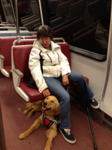 Hero Dogs Maverick & Ethel on the metro