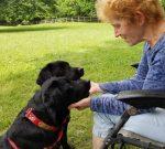 Summertime living for Hero Dogs Sally